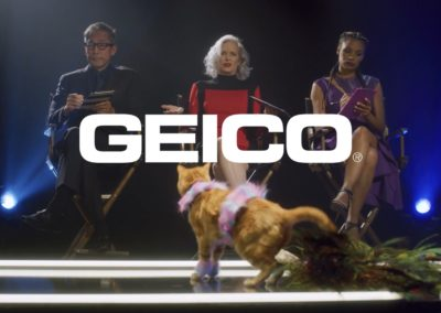 Geico – Cats On A Catwalk? (Seriously?)